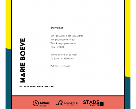 Marie Boeve - Reuze licht
