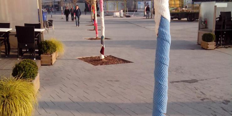 Warme bomen